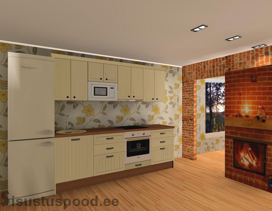 Värvitud ustega köögimööbel