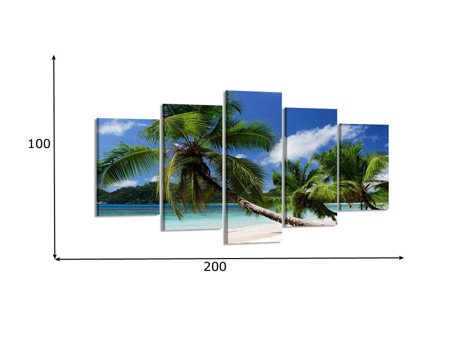Viieosaline seinapilt Palmid