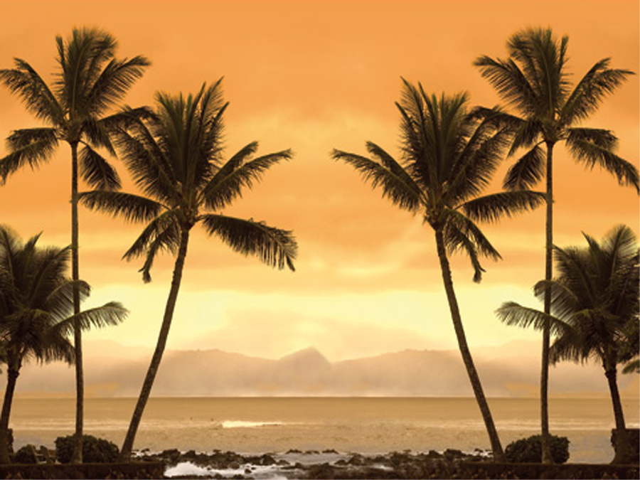 Fototapeet CARIBBEAN BEACH