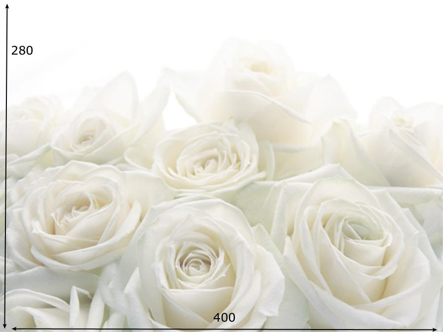 Fototapeet WEDDING ROSES