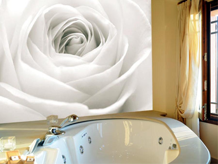 Fototapeet THE WHITE ROSE