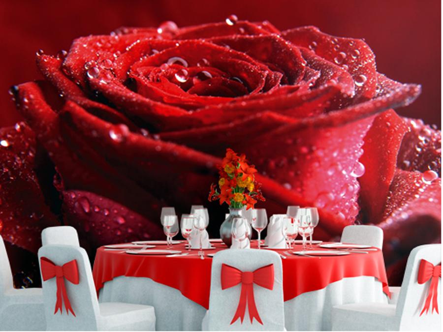 Fototapeet PROUD RED ROSE