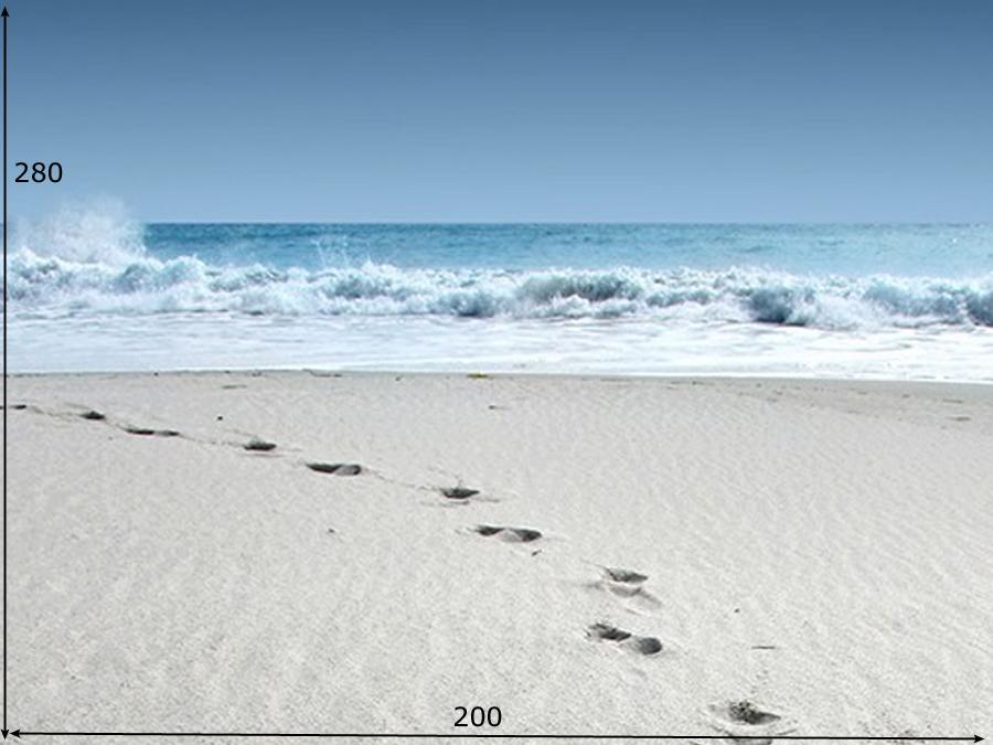 Fototapeet WALK ON THE BEACH