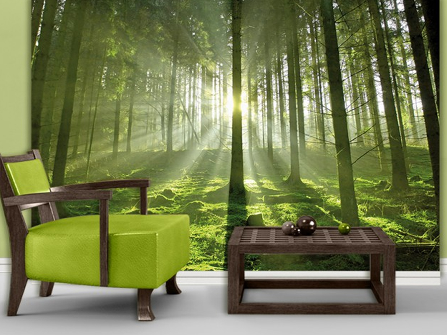 Fototapeet FAIRYTALE FOREST
