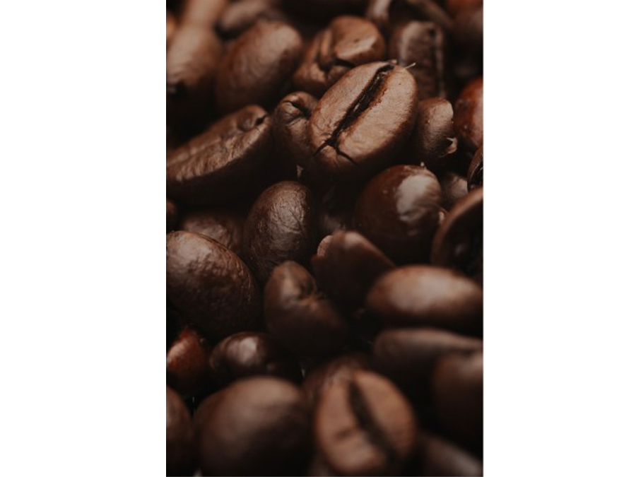 Fototapeet COFFEE ARABICA
