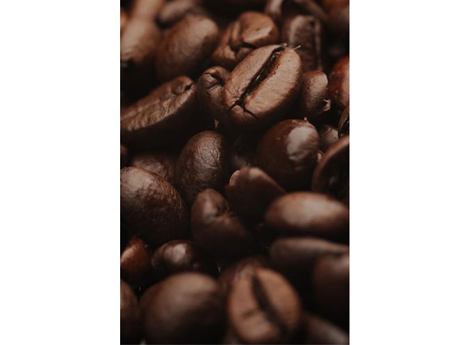 Fototapeet COFFEE ARABICA